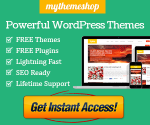 WORLD CLASS, RESPONSIVE FREE AND PREMIUM WORDPRESS THEMES